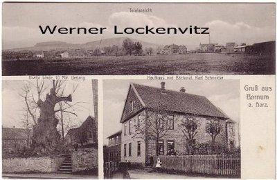 Ansichtskarte Bornum am Harz Totalansicht Kaufhaus Schneider