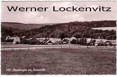 Ansichtskarte Löwenhagen am Bramwald Ortsansicht