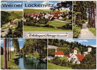 Ansichtskarte Neuhausen-Steinegg im Schwarzwald mehrfach Panorama