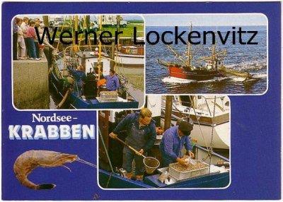 Ansichtskarte Nordsee-Krabben Krabbenfischer SW. 1 Elfriede Schleswig-Holstein Motive Berufe
