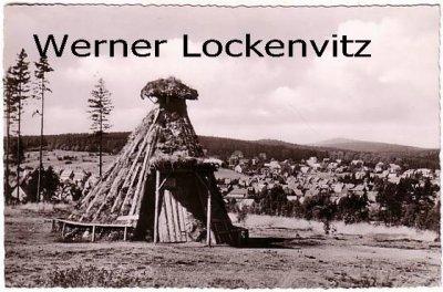 Ansichtskarte Braunlage Ortsansicht Panorama mit Harzer-Kröte