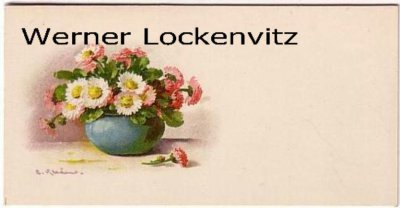 Astern Blumen Kleine Karte mit Umschlag sign. C. Klein