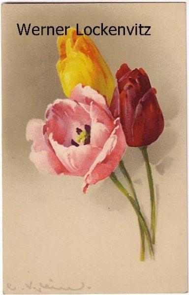 Ansichtskarte Blumen Künstler Tulpen Gemälde sign. C.  Klein