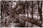 Ansichtskarte Detmold Allee Fluß mit Schwänen
