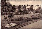 Ansichtskarte Dresden-Hellerau Anlagen an der Karl-Liebknecht-Straße