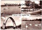 Ansichtskarte Berlin-Tegel Gruss vom Tegeler See Motorbootrennen Promenade
