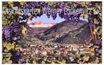 Ansichtskarte Cartolina Italien Italia Bolzano Bozen Gries Panorama Ortsansicht von Trauben Wein umrankt