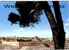 Ansichtskarte Israel Jerusalem Panorama