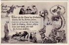 Alte Ansichtskarte Militär Jüterbog Altes Lager Gruß vom Truppen Übungsplatz Skat Akkordeon Pferde