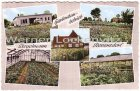 Ansichtskarte Revensdorf bei Gettorf Gartenbaubetrieb der Firma Stegelmann