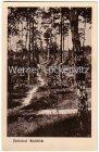 Ansichtskarte 16515 Zühlsdorf Waldblick