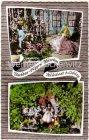 Ansichtskarte Neustadt bei Coburg Trachten-Puppen-Museum mehrfach Dornröschen und Schneewittchen