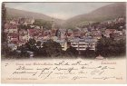 Alte Ansichtskarte Baden-Baden Panorama Ortsansicht