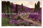 Ansichtskarte Am Heidehang Gemälde von O. Kaule