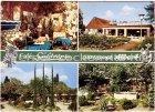 Ansichtskarte Bremen Cafe Subtropia Bes. August Albert Gärtnerei