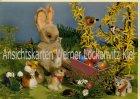 Ansichtskarte Hamster und Hase  von Steiff