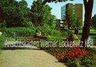 Ansichtskarte Wilhelmshaven Im Kurpark