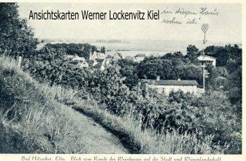 Ansichtskarte Hitzacker Blick vom Rande des Weinbergs auf die Stadt