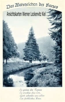 Ansichtskarte Das Wahrzeichen des Harzes Es grünt die Tanne