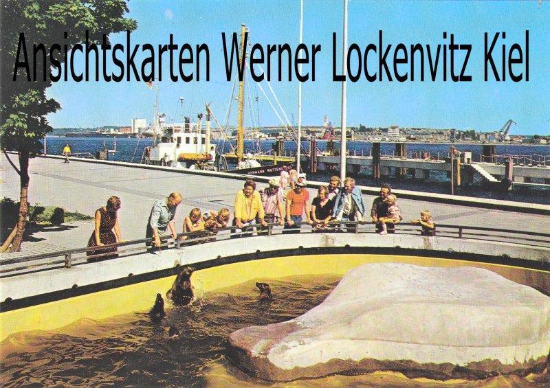 Ansichtskarte Kiel An der Kiellinie mit Seehundbecken