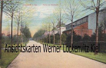 Ansichtskarte Limbach-Oberfrohna Partie im Stadtpark