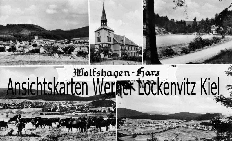 Ansichtskarte Langelsheim-Wolfshagen Harz Ortsansichten Kirche Kühe