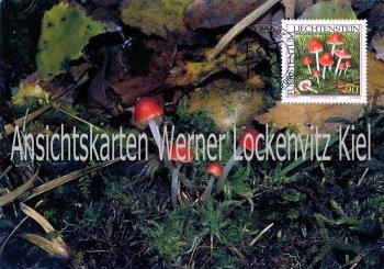 Liechtenstein Korallenroter Heimling Pilze Maximumkarte