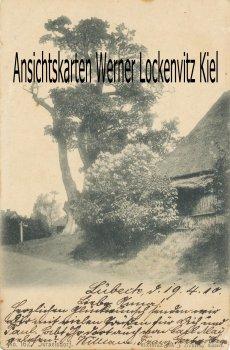 Ansichtskarte Lübeck-Israelsdorf Israelsdorfer Eiche und Räucherkate