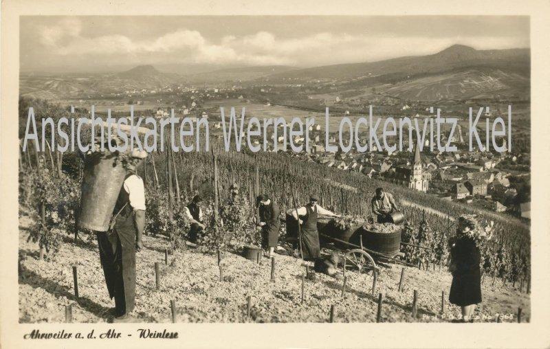 Ansichtskarte Bad Neuenahr-Ahrweiler Weinlese