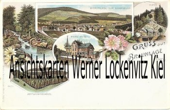 Ansichtskarte Braunlage Ortsansicht Berg Hotel Litho