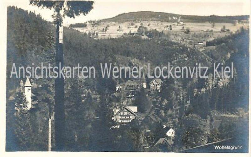 Ansichtskarte Polen Wölfelsgrund Międzygórze Grafschaft Glatz Ortsansicht
